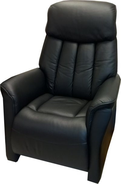 castlemark riser recliner chair