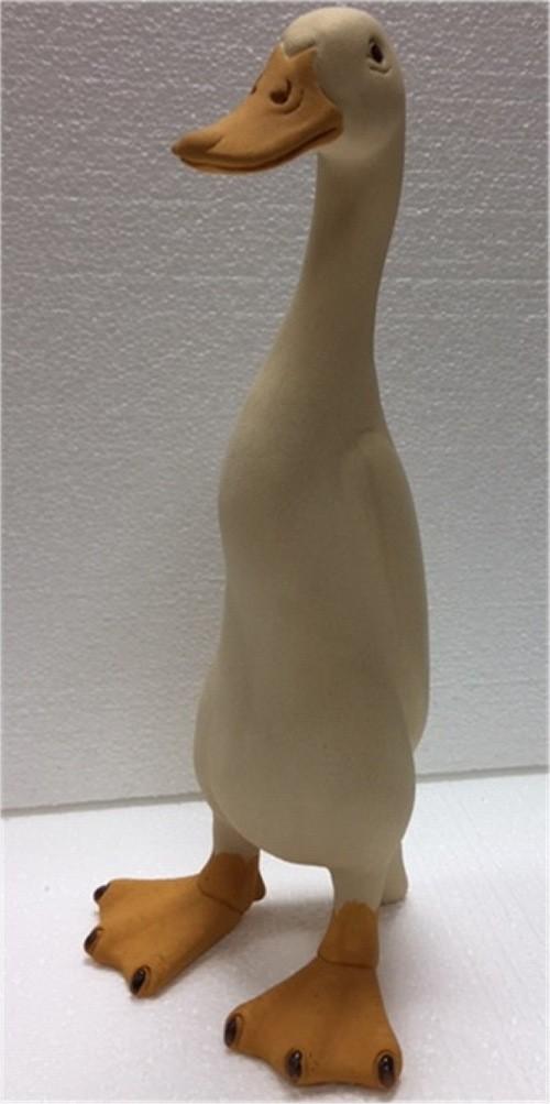 suzie marsh andrew duck